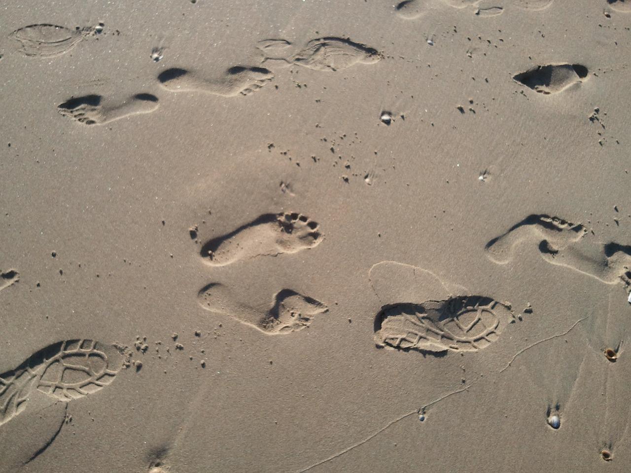 beach-339495_1280